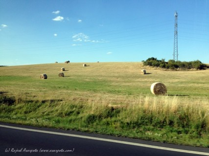 The Straw Bales